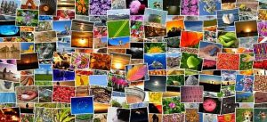 best free stock photo websites