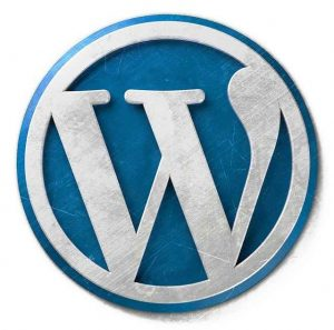 SEO Tips For WordPress Site